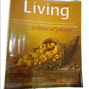 NOVEMBER 2004 MARTHA STEWART LIVING Issue No.132